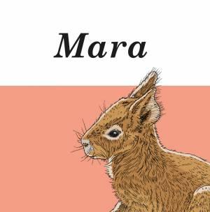 Geboortekaartje Mara